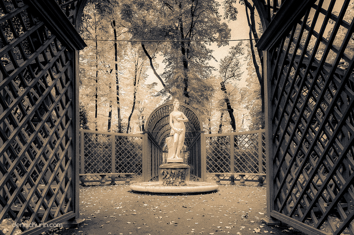 "Dreams of the Old Garden photo series by Denis Churin. Фотосерия Дениса Чурина ""Сны Старого Сада""."