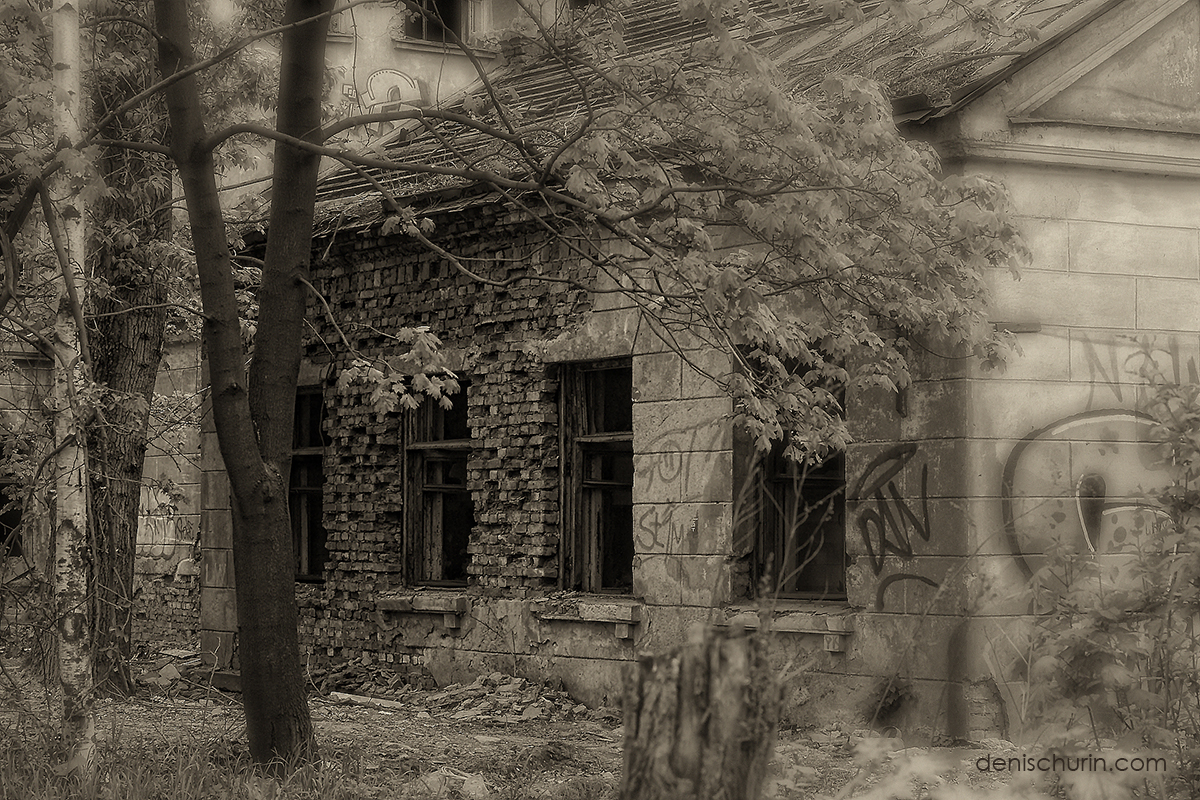 The-Old-House